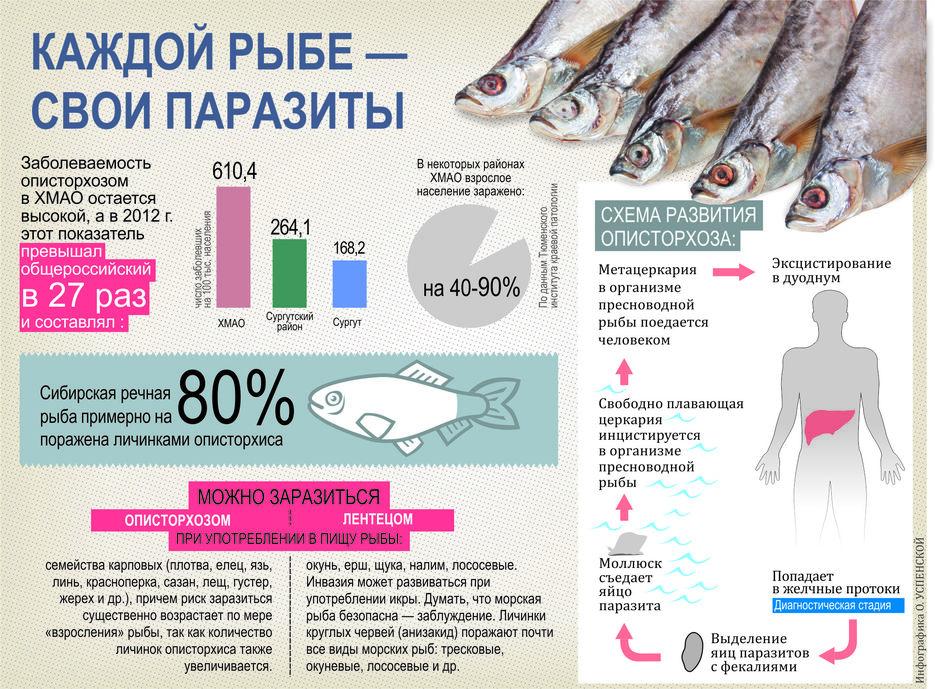 Не золотая рыбка